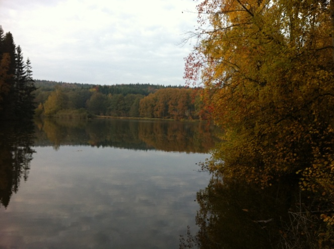 podzimni_krajinou_2013_01